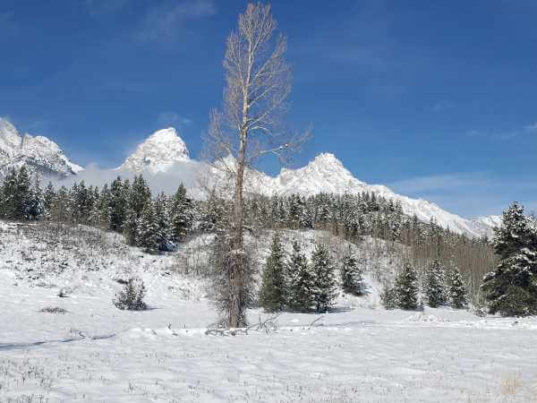 teton_national_park.10