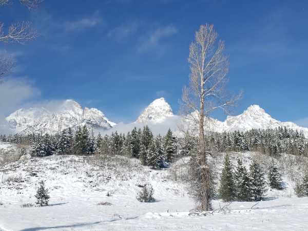 teton_national_park.8