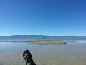 bear lake waterfront