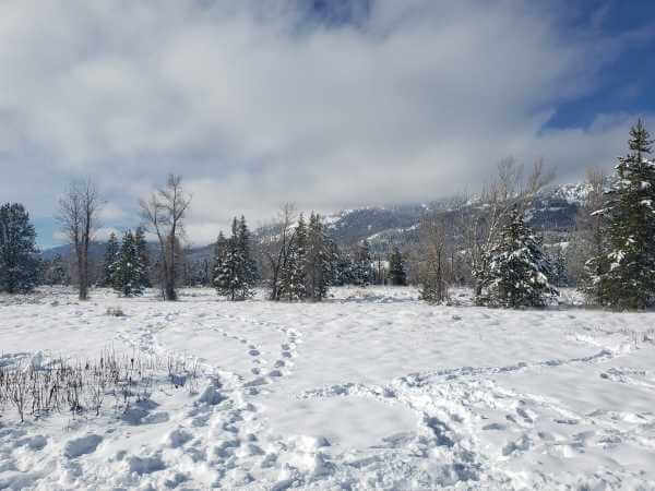teton_national_park.5