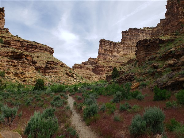 Daddy Canyon within Nine Mile Canyon